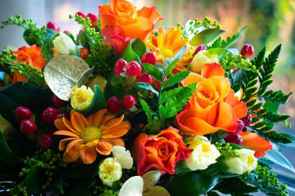 gros plan sur un bouquet de fleurs orangées