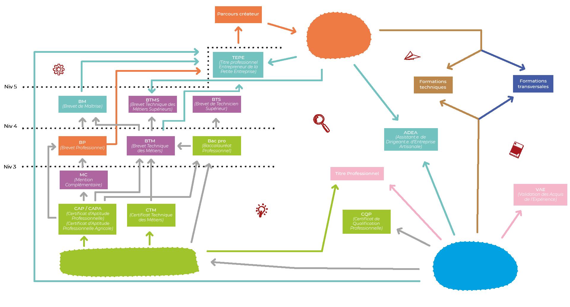schéma qui définit le parcours de formation de la CMA
