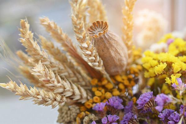 Bouquets ronds thème champêtre